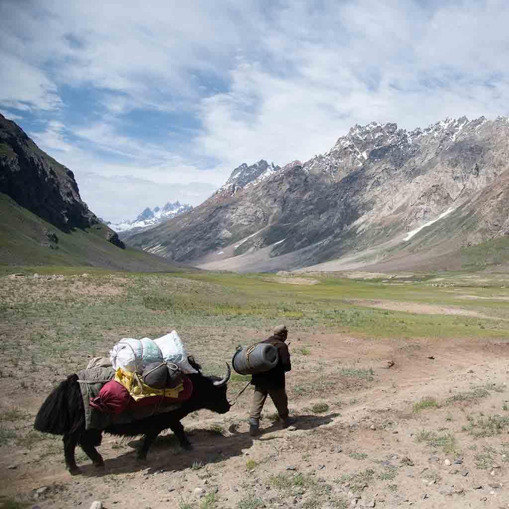 Zanskar Exploratory Alpinism | 6000m+